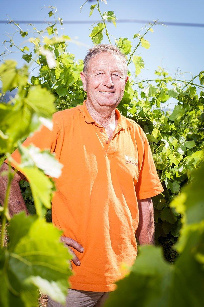 Portrait d'un vigneron du Luberon en extérieur ensoleillé entouré d'une vigne